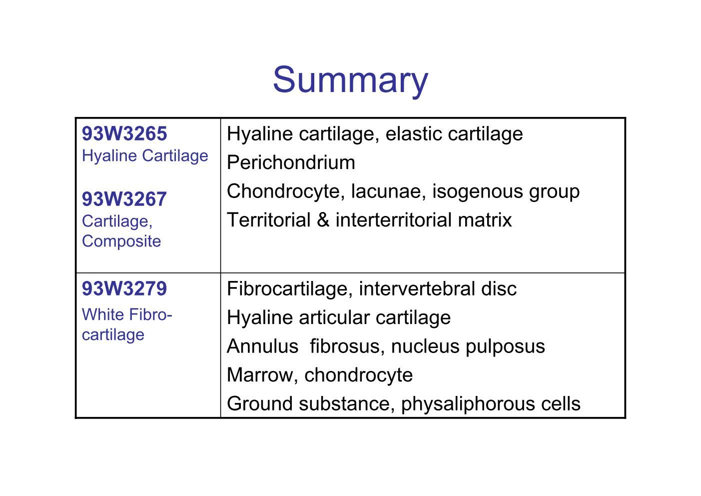 Block6 1 Summary